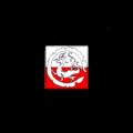 Polsko-Chińska Izba Gospodarcza